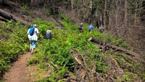 Hikers Return on Dry Creek Falls Trail