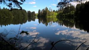 Round Lake Hike