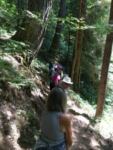 Hikers on the Trail