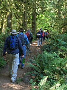 Hikers Continue on the Trail