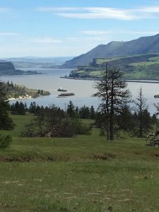 Columbia River and Barge from Catherine Creek Trail